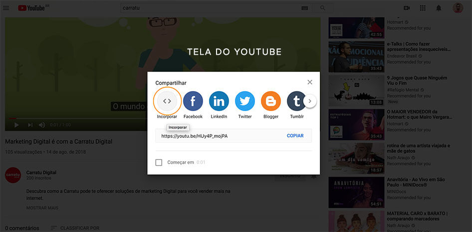 código compartilhamento youtube wordpress